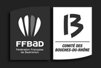 partner_ffbad